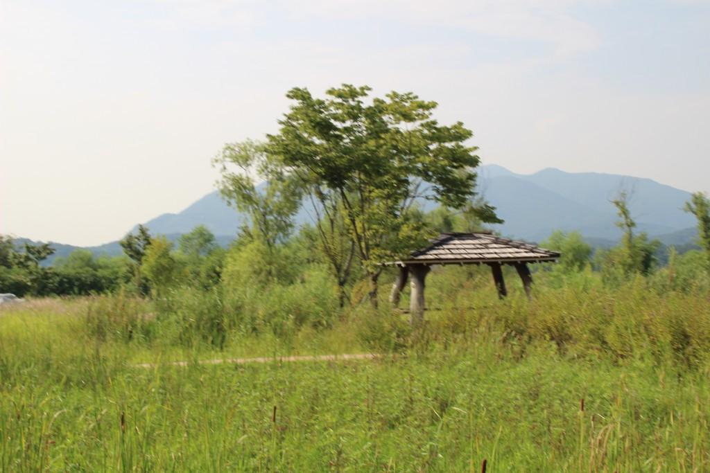 도자기,물안개공원,우렁이살 102