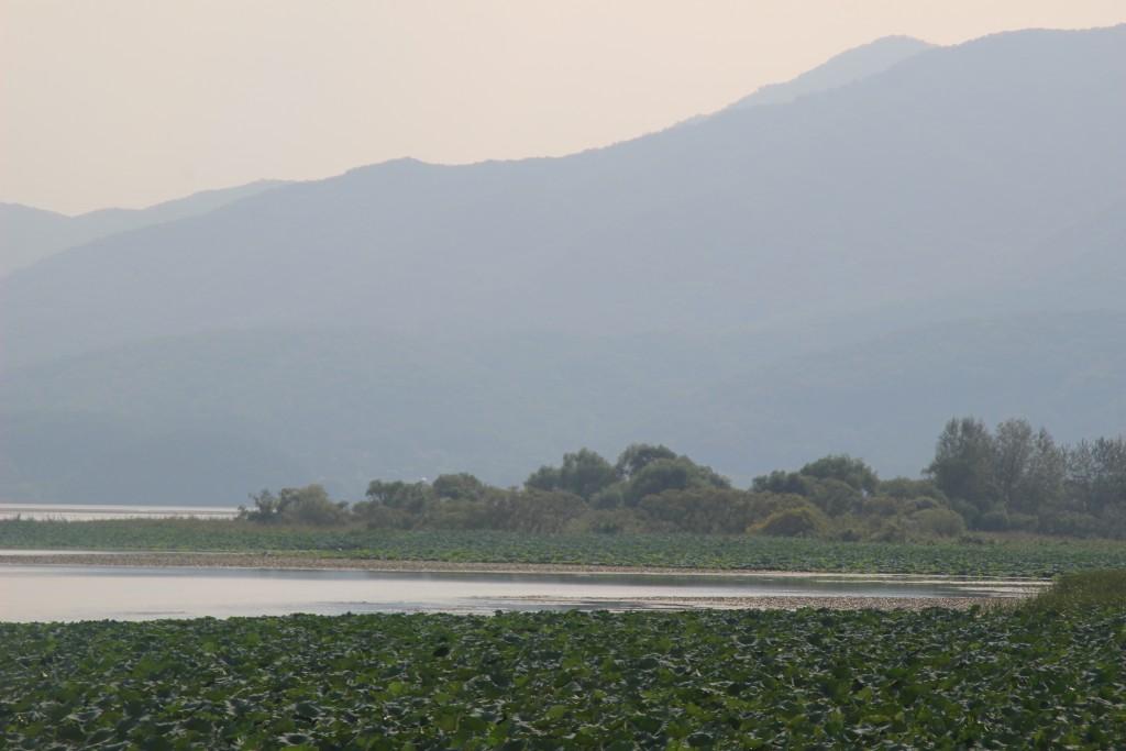 도자기,물안개공원,우렁이살 120