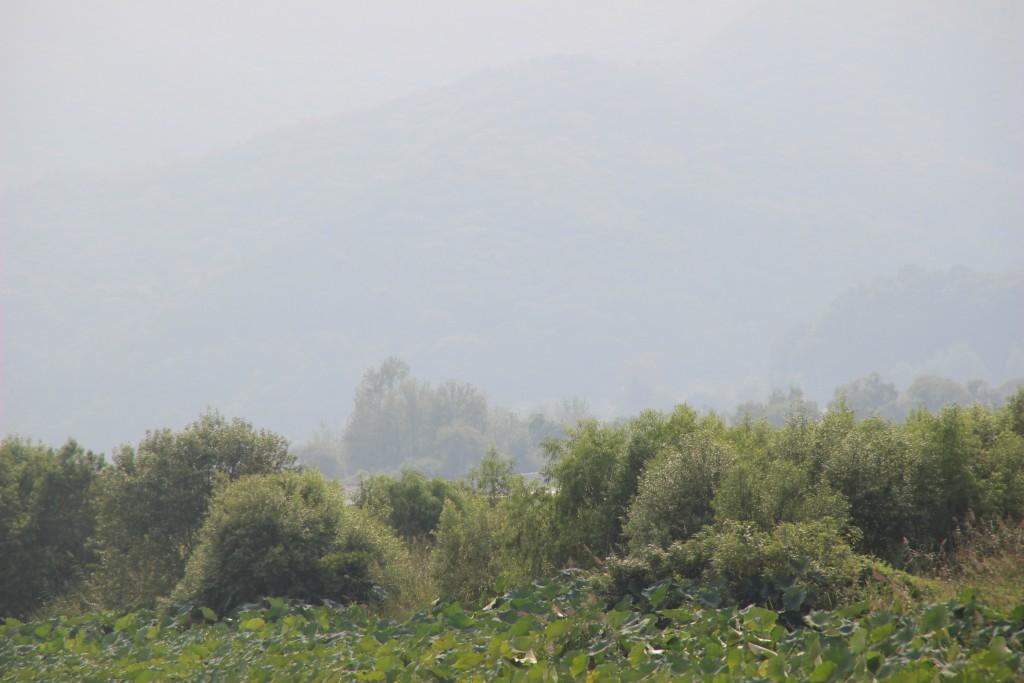 도자기,물안개공원,우렁이살 121