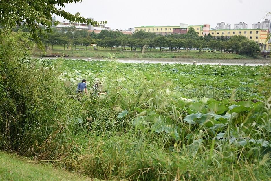 만석공원11