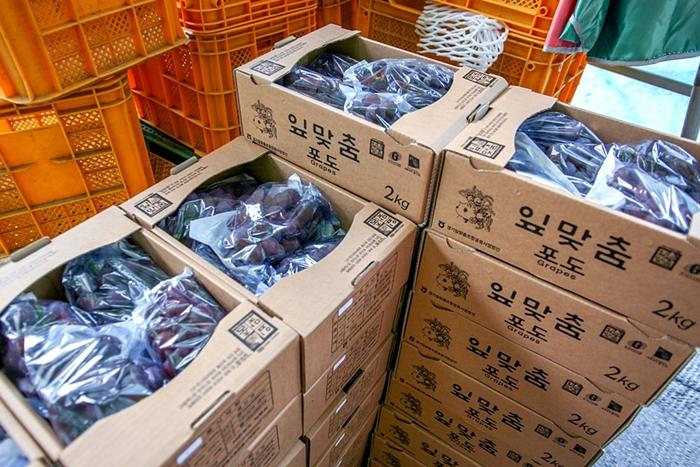 안성맞춤남사당 바우덕이축제 022