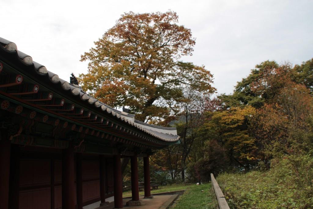 경기도광주문화제,모두가도시농부웹시연회 035