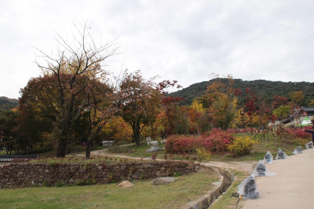 경기도광주문화제,모두가도시농부웹시연회 094