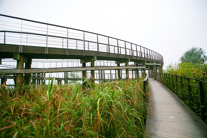 다산생태공원 007