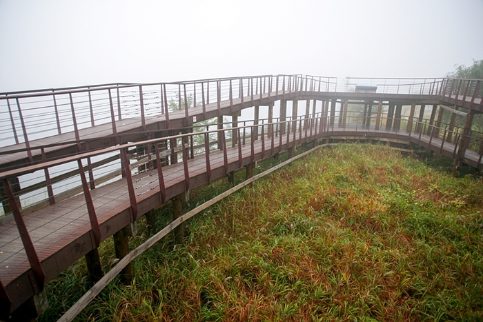 다산생태공원 008