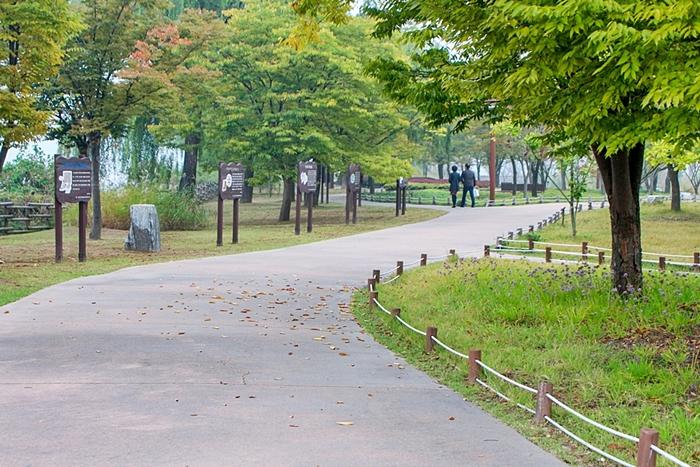 다산생태공원 011