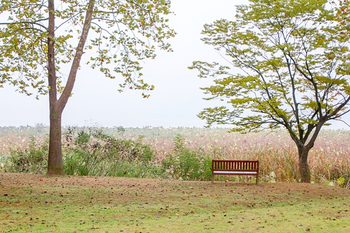 다산생태공원 013