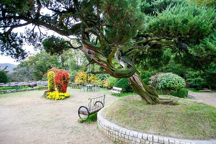 율봄식물원 020