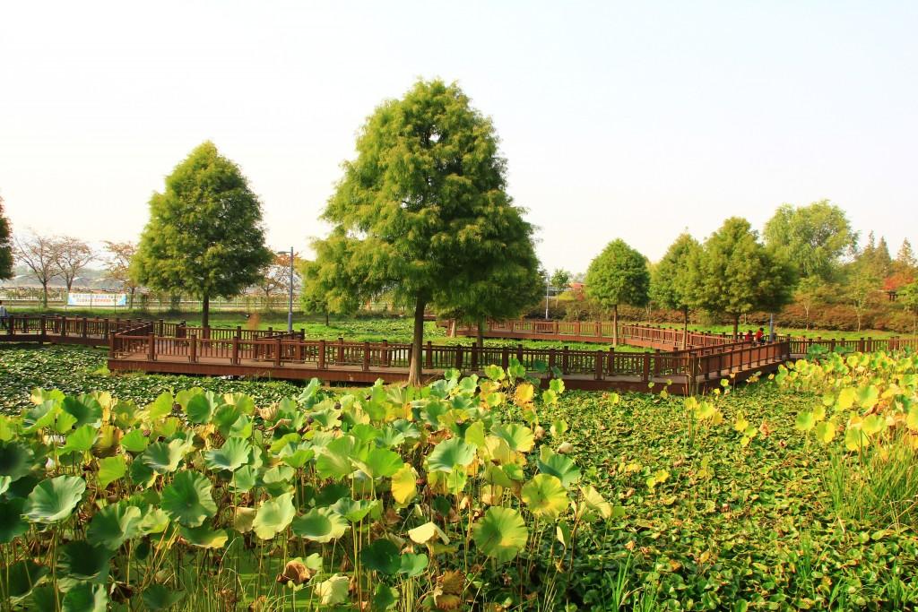 당수동시민공원, 의왕자연학습장 331