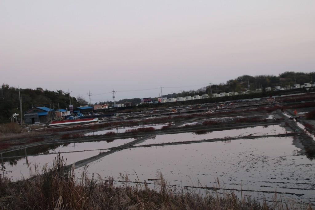 대부도,염전,대부광산,당산,누에섬 282