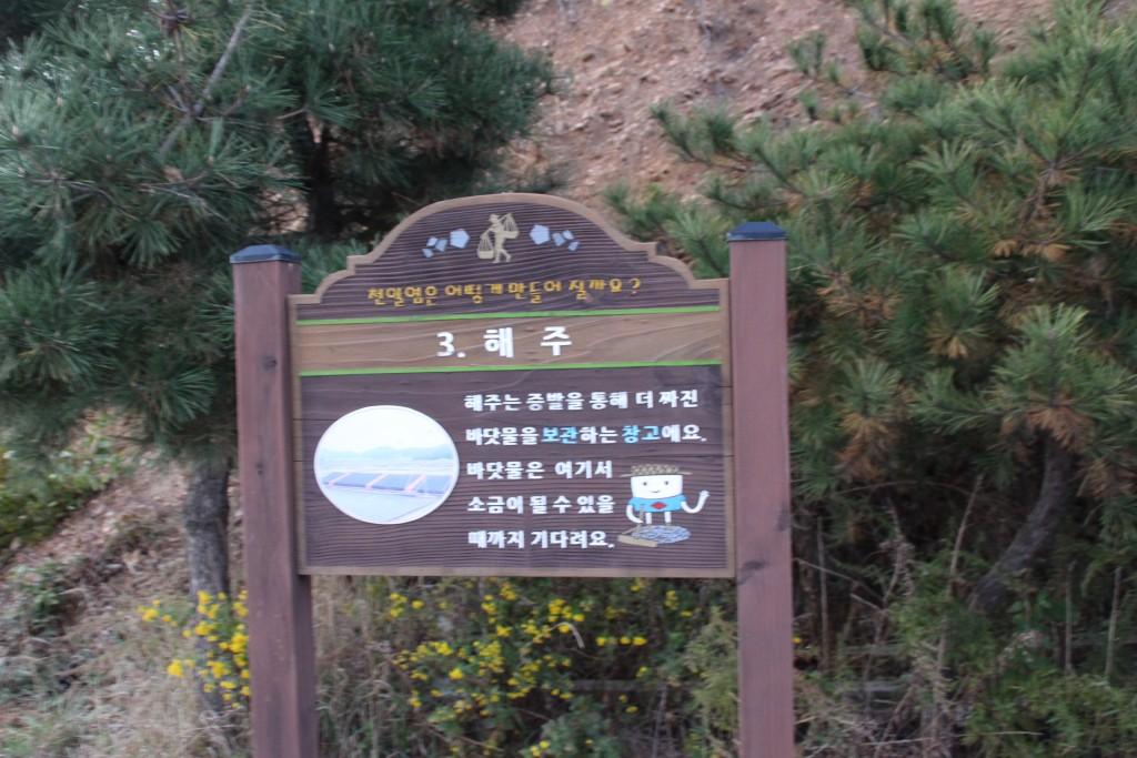 대부도,염전,대부광산,당산,누에섬 287