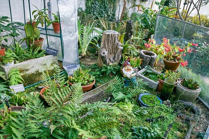 한택식물원 004