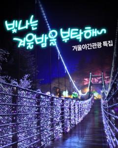 겨울 야간관광 특집
