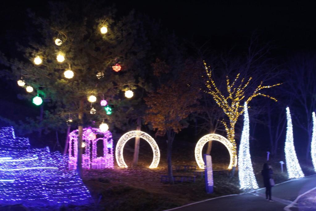 여운영생가,닥터박,예쁜아줌마,두메향기불빛축제 235