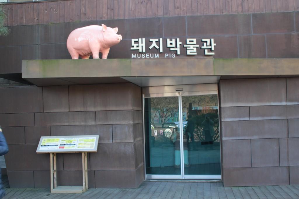 와우목장,돼지박물관 006