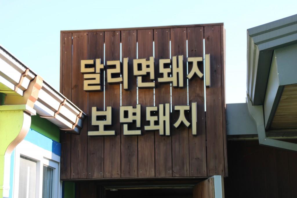 와우목장,돼지박물관 053