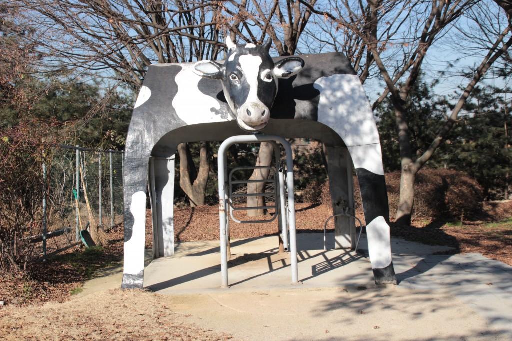 와우목장,돼지박물관 120