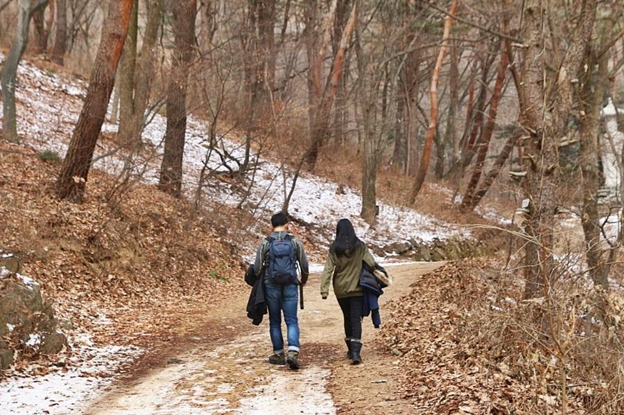 숲길을 걸어가는 사람들
