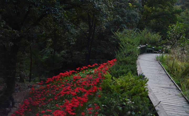 신구대식물원