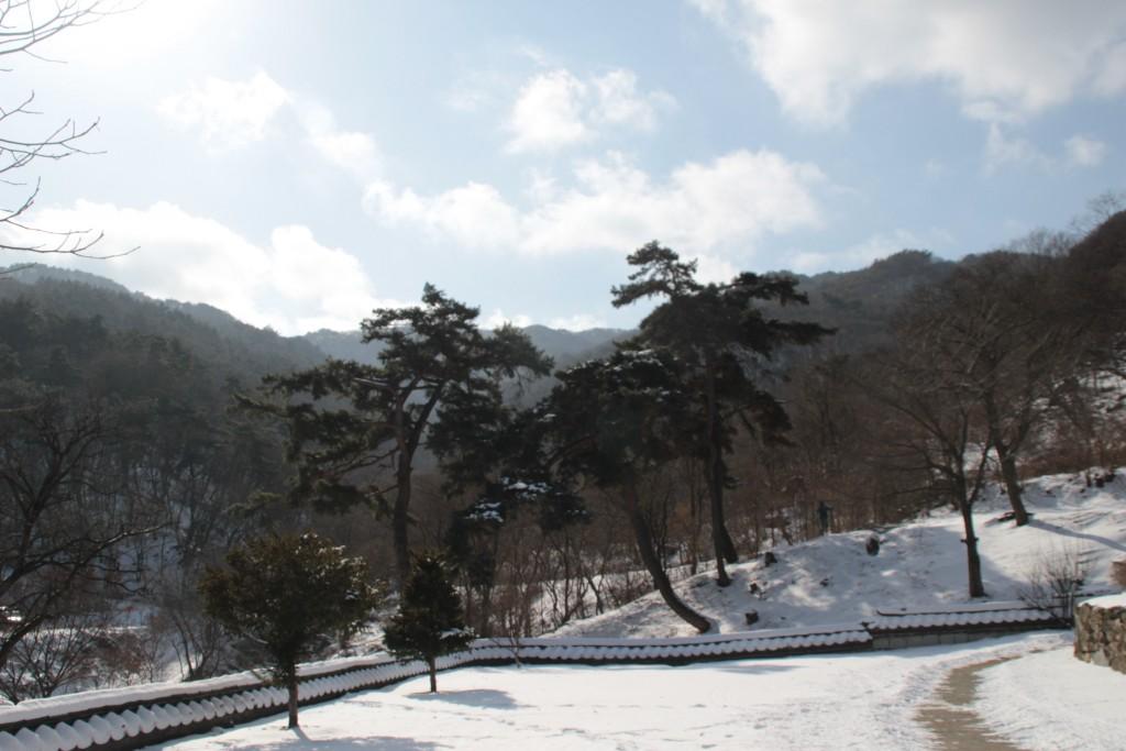 석남사,31기념관,안성시장,설렁탕 203