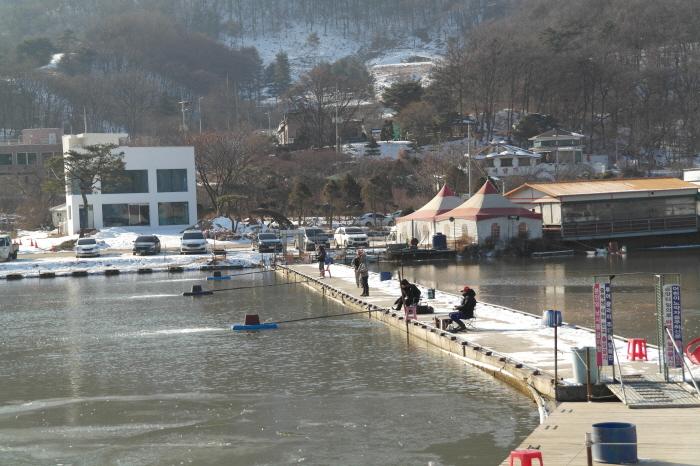 시흥 물왕저수지