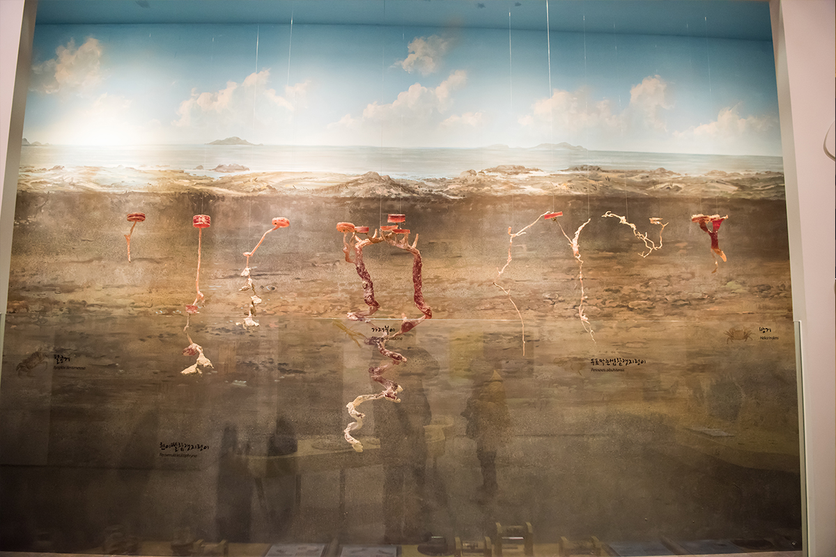 08 안산어촌민속박물관