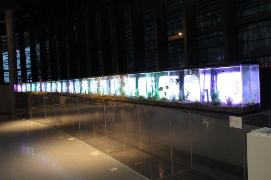 경기박물관,배자,장욱진,전위예술 382