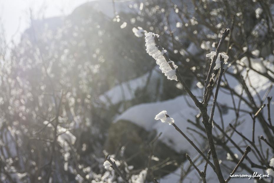 용문산겨울산행_021