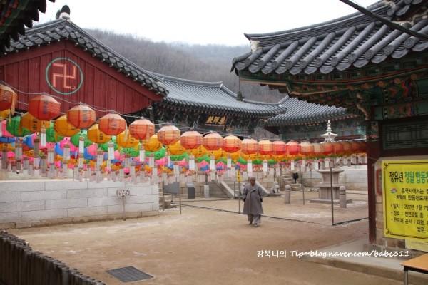 경기도 고양 가볼만한곳 – 신년 사찰여행 천년고찰 흥국사