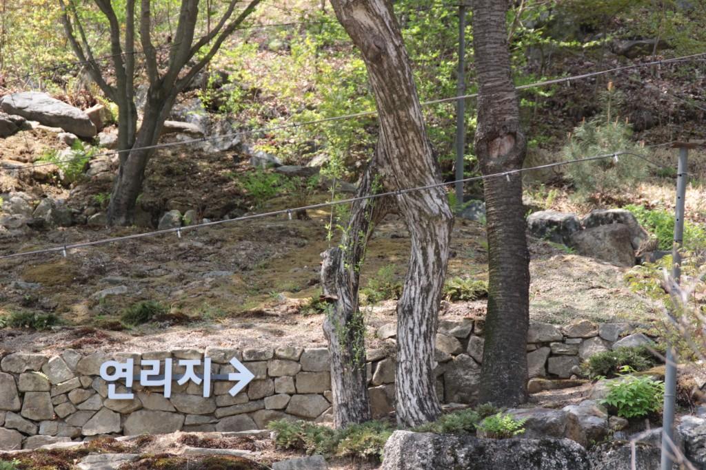 광쥬화담숲,곤지암도자축제 204