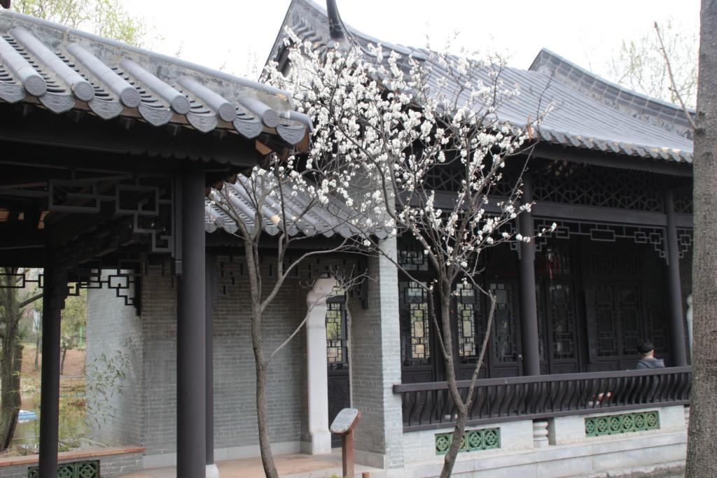 수원하이텍고,월화원,반야사,나혜석거리,곰탕 168