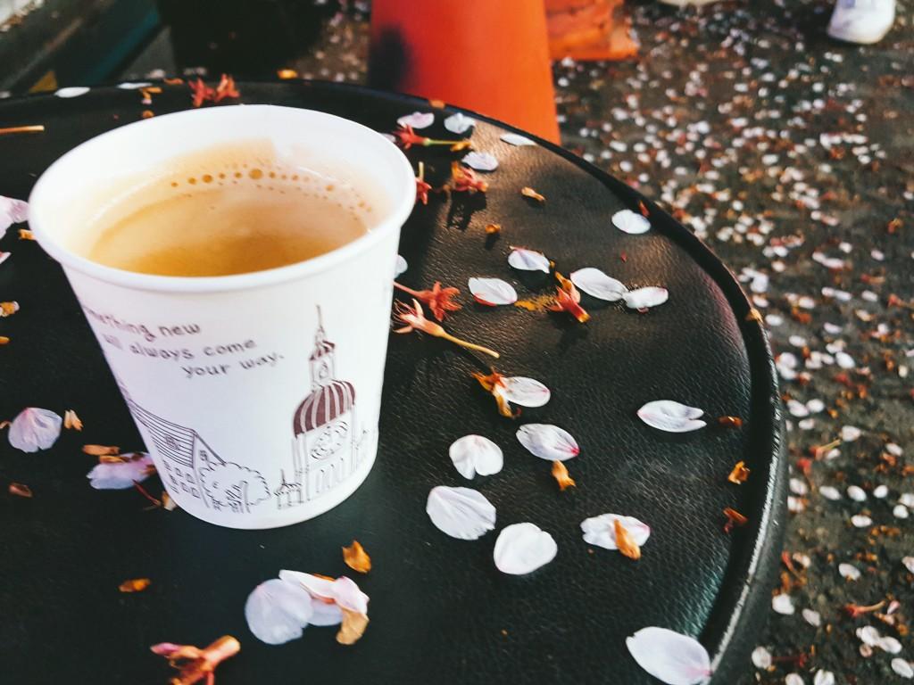 크레마가 가득한 원두 커피