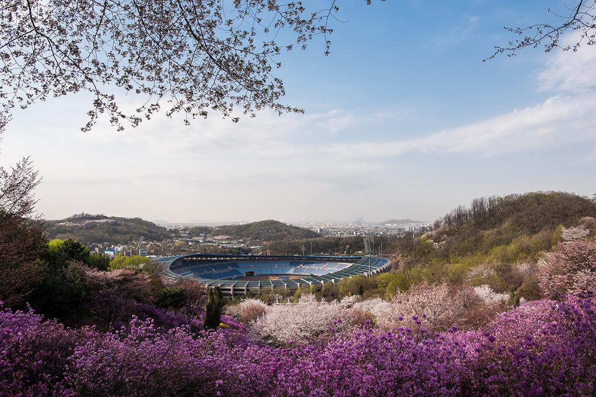 12 원미산진달래공원
