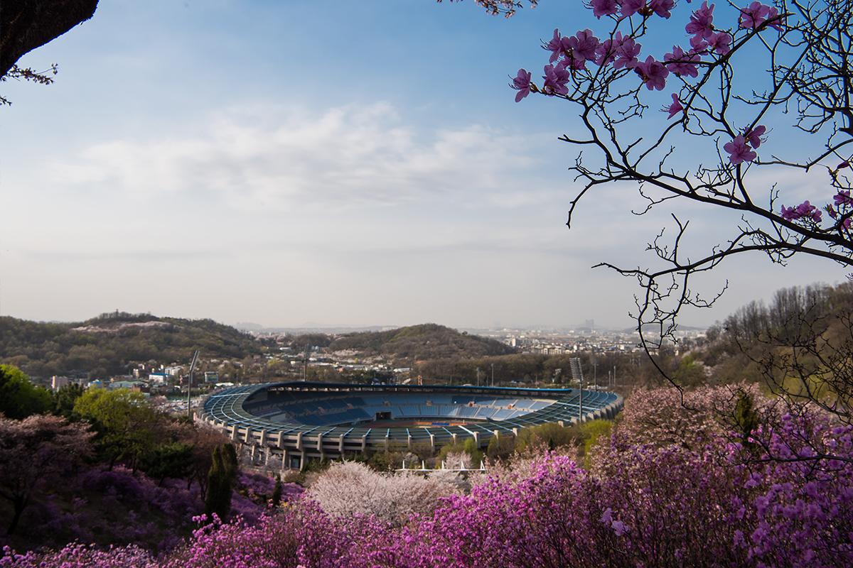 13 원미산진달래공원