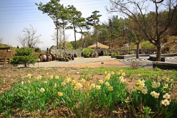 여주여행/경기도 가볼만한곳 여주 황학산수목원