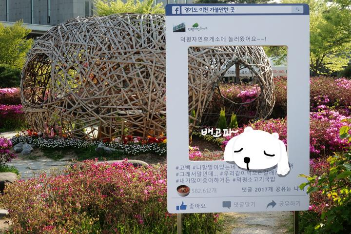 정원 내 포토존