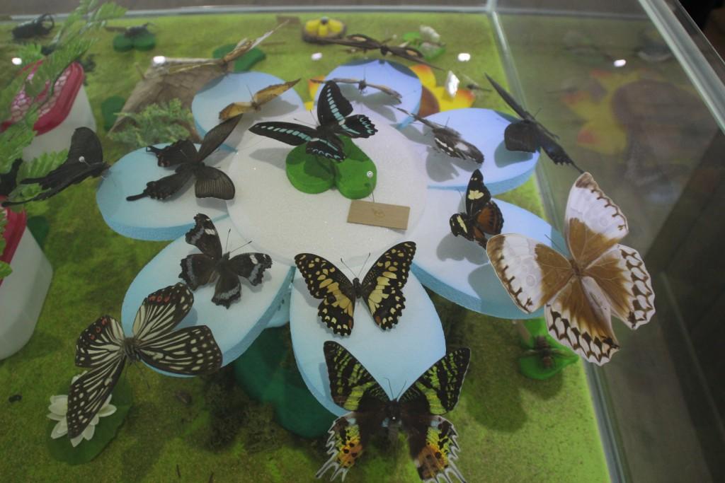 여주도자,신륵사 곤충박물관 377