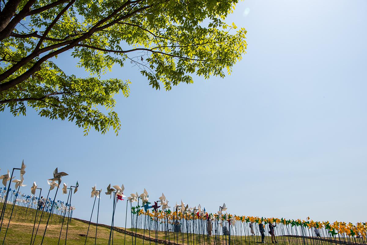 10 평화누리공원