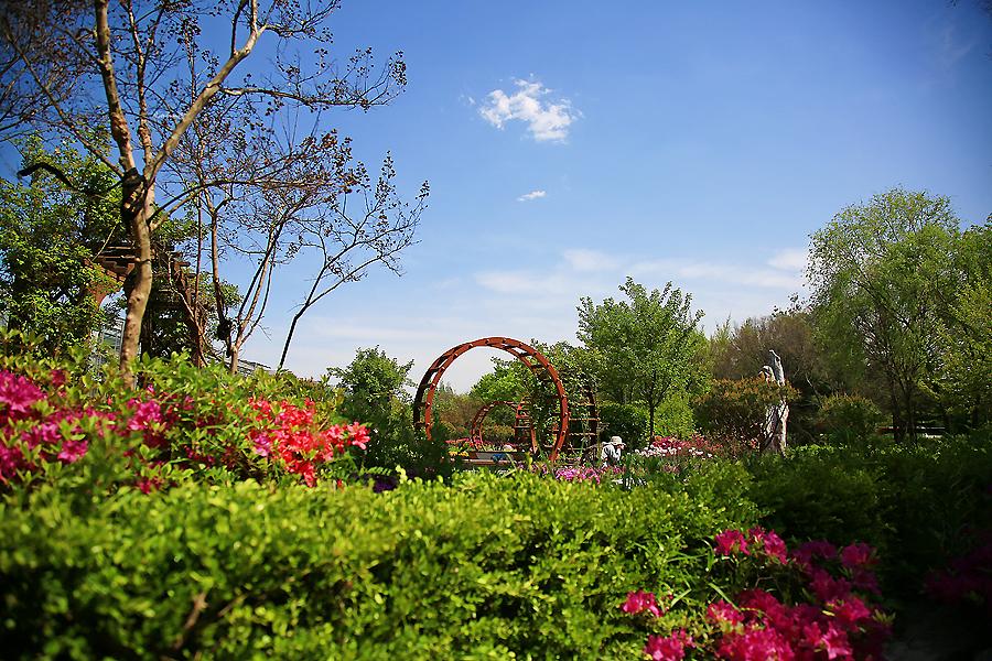 안산가볼만한곳,안산식물원