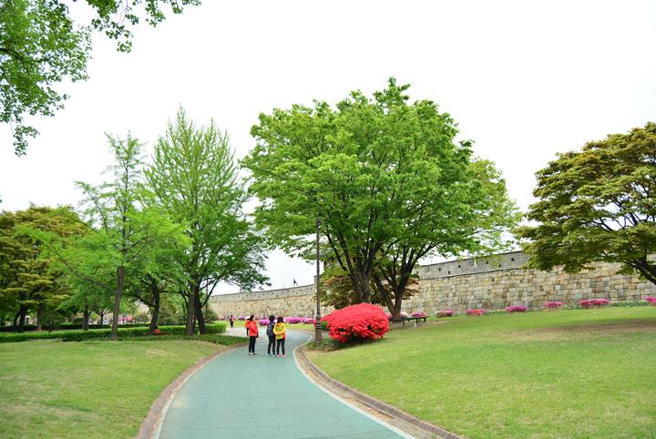 수원 장안공원