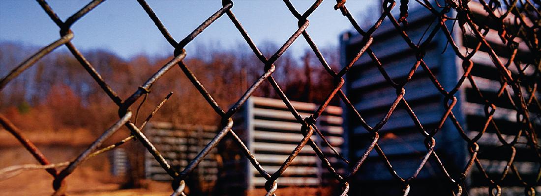 <p>캠프그리브스 문화전시</p> 진짜 DMZ를 만나다 배너