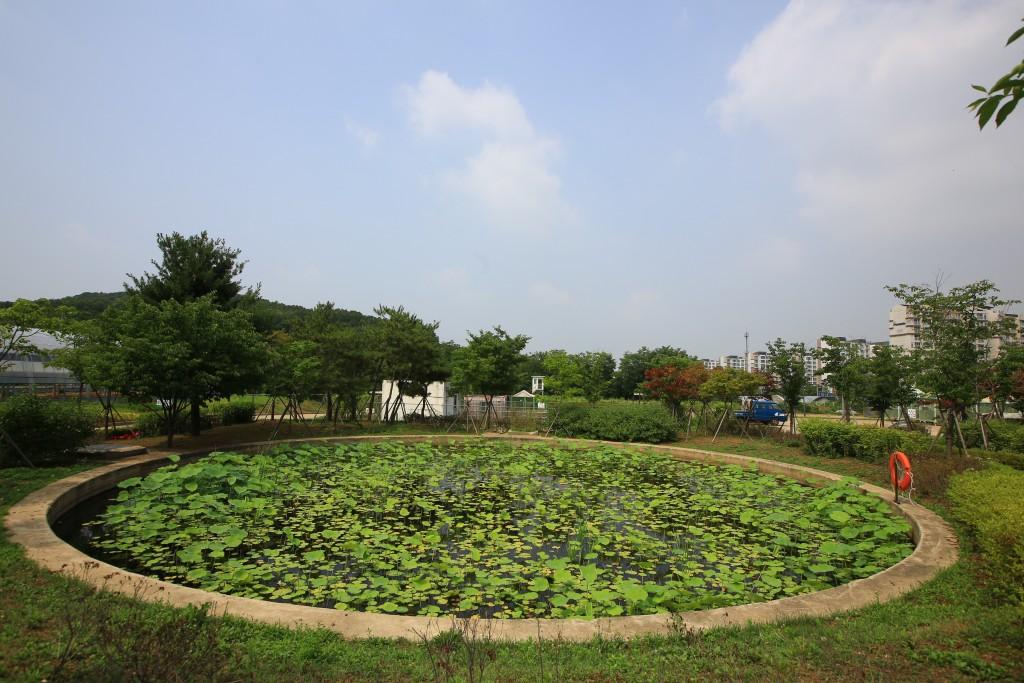 연못과 연