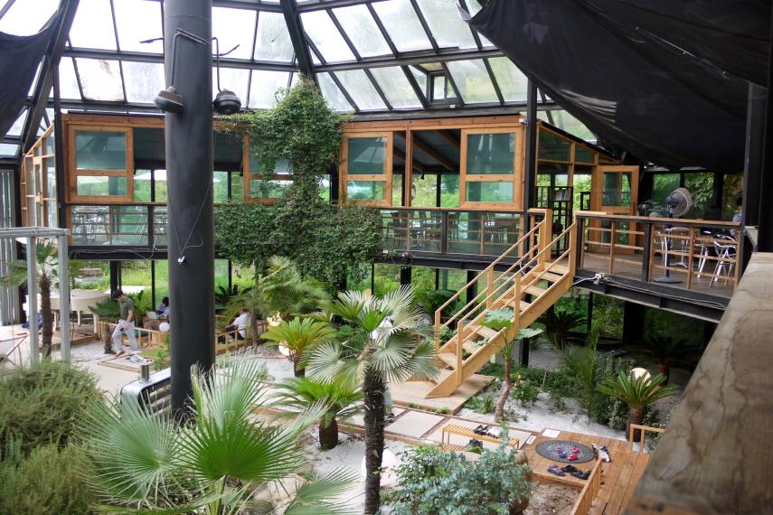 카페내부 식물들로 꾸며진 풍경
