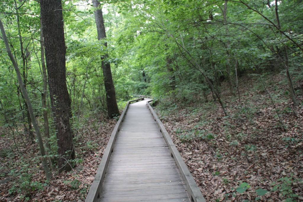 숲 생태관찰로