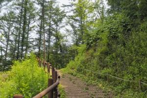 [포천여행] 한탄강둘레길 멍우리협곡에서 비둘기낭폭포