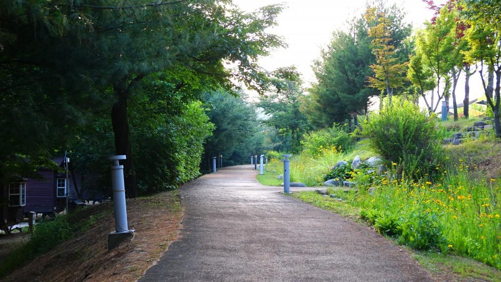 산책로 사진