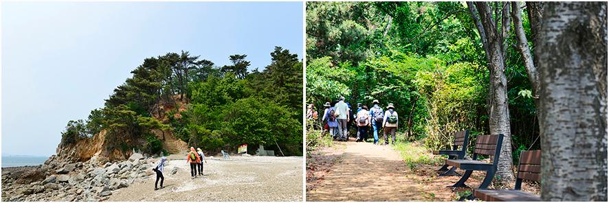도지섬 입구, 숲이 우거진 산길을 걷는 사람들