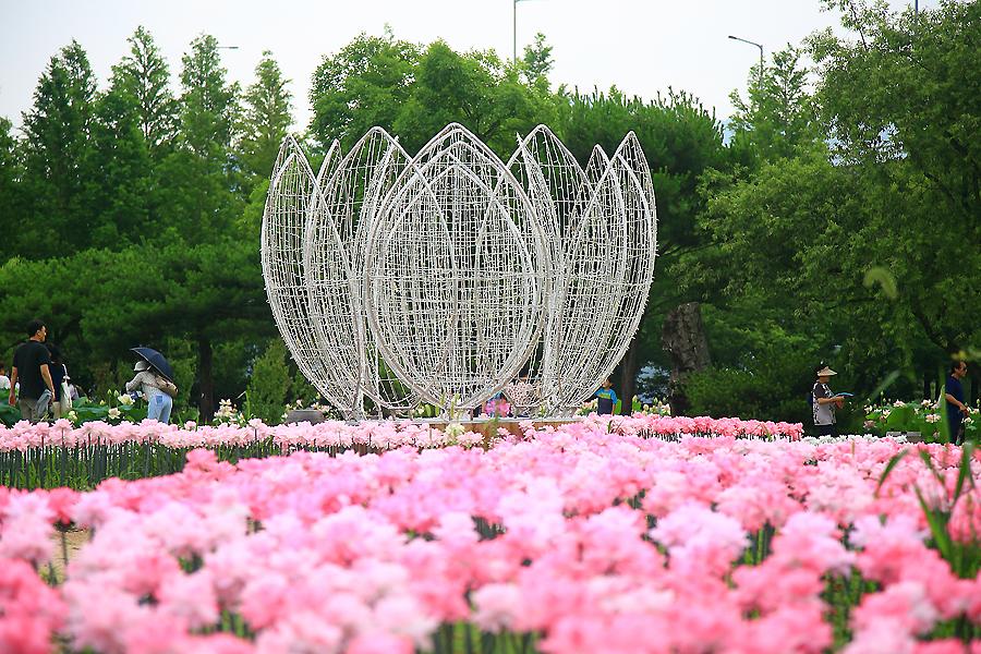 꽃들과 조명