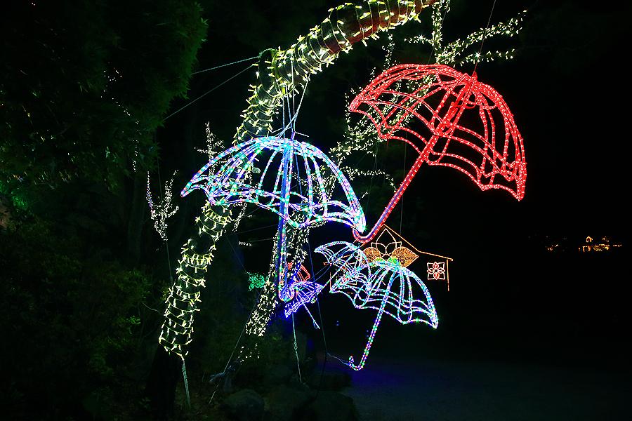 나무와 우산조명