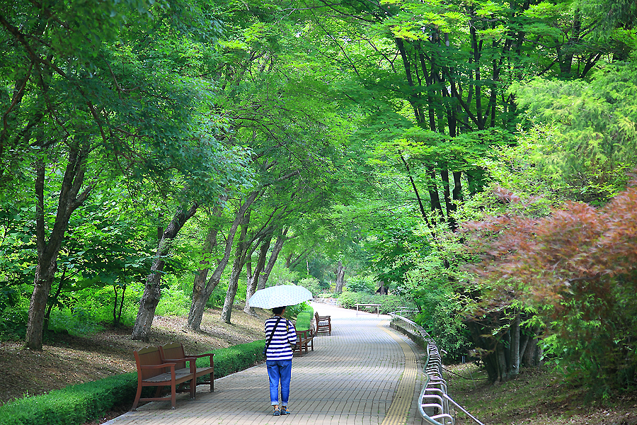 산책로를 걷는 사람
